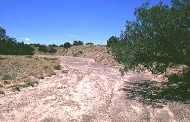 A dry arroyo showing signs of recent flow near 35N-107W