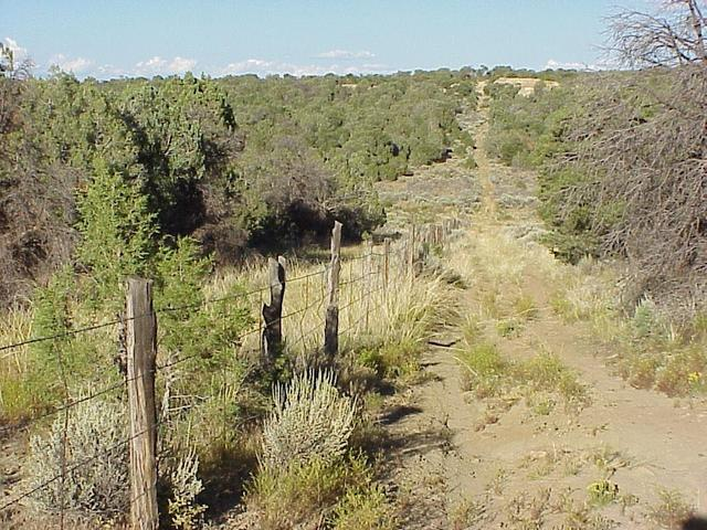 View to the east along the state line, 40 meters southeast of the confluence, Colorado on left, New Mexico on right.