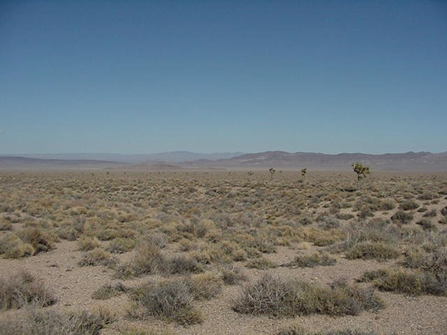 Looking East to Pahute Mesa