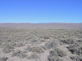 #3: View East (towards the White River Valley, and Nevada Highway 318)