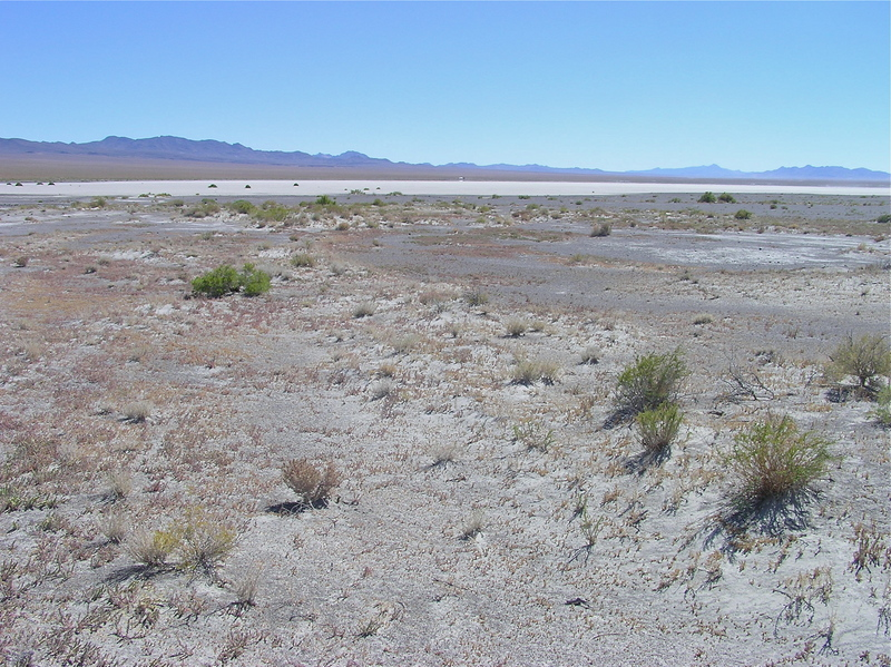 View South (across the dry lake bed)