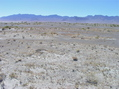 #5: View West (towards the Reveille Range)