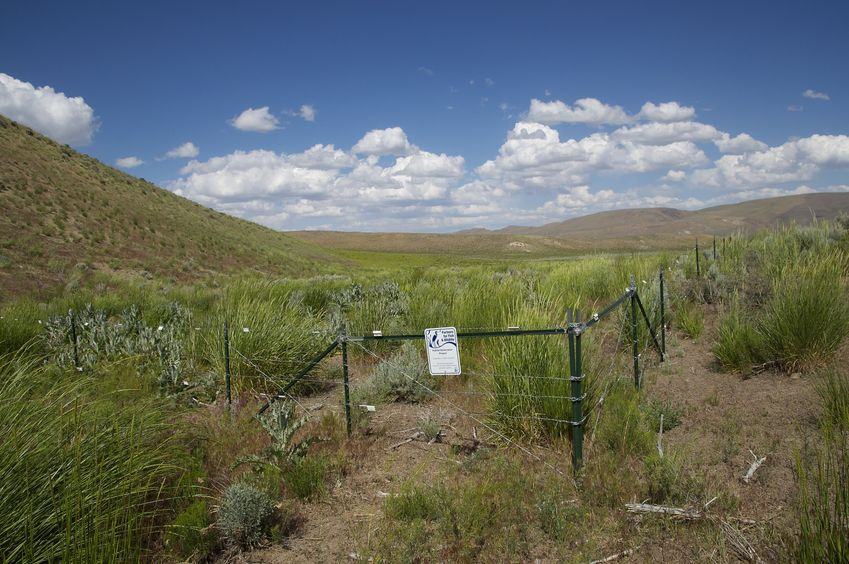 "A fenced-off ""Habitat Restoration Project"", about 1.2 miles south of the confluence point"
