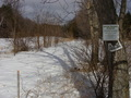 #8: A snowy road runs along the eastern side of the Marshall DesRoches pond at 43N 74W.