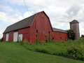 #7: The red barn