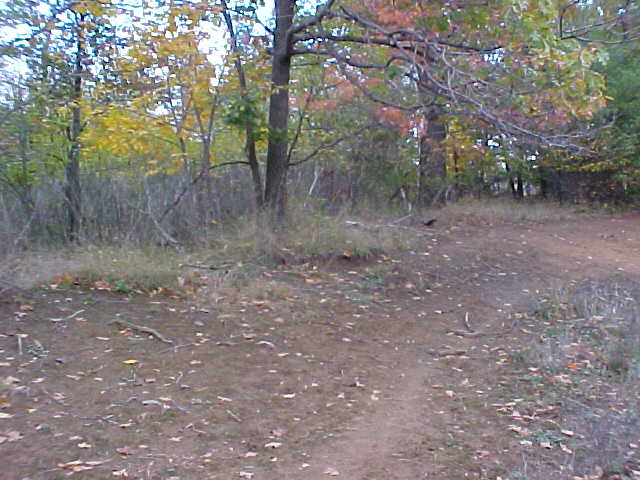 Confluence Area View #4 - the autumn foliage is nearly at its peak