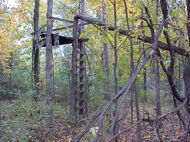 This hunter's treestand is in the woods nearby.