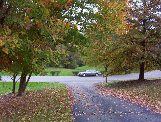 View east down the driveway of 201 Skyline Dr.