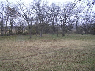 #1: Confluence of 34 North 96 West, in center of photograph in the grassy field, looking northeast.