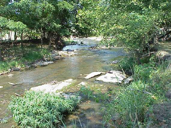 Fourteen Mile Creek