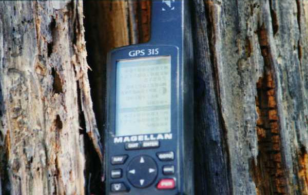 GPS on Location. Glare on screen. GPS is hanging from the snag at site.