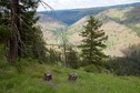 #7: Looking down towards the Degree Confluence point and the John Day River from the ridge top