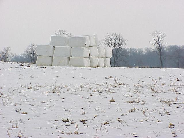 Looking southeast from the confluence at the field and covered hay bales.