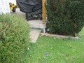 #7: Confluence Point @ House Patio