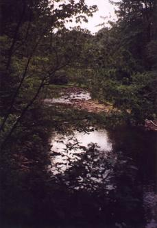#1: Stream near confluence