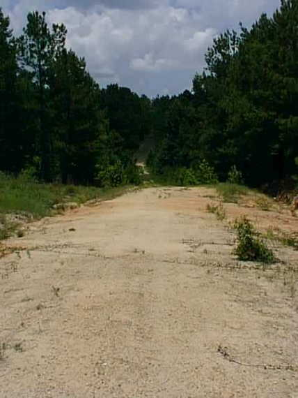 The dirt road off of Hwy 96 just north of Jasper, Texas