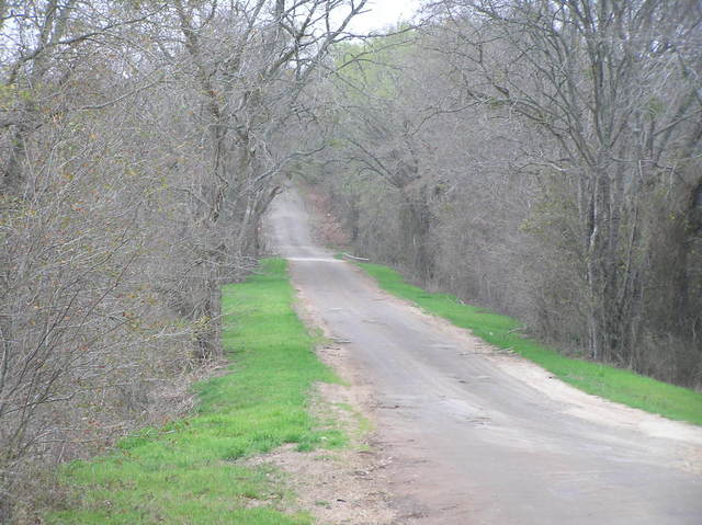 A quiet and murky road--the nearest road to the confluence, looking south.
