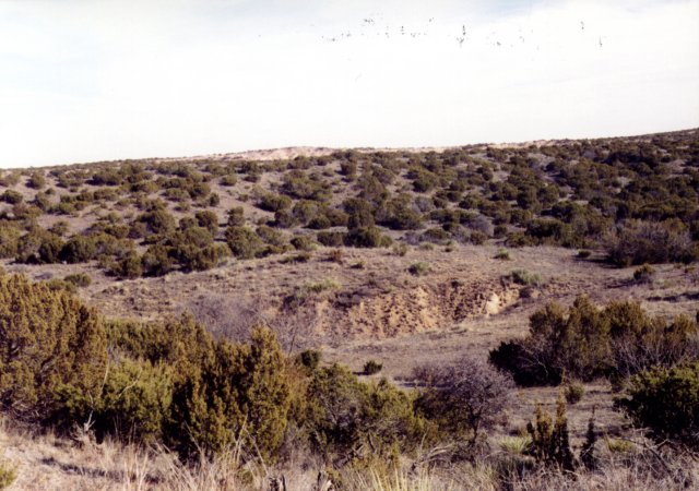 East view; gravel pit in foreground?