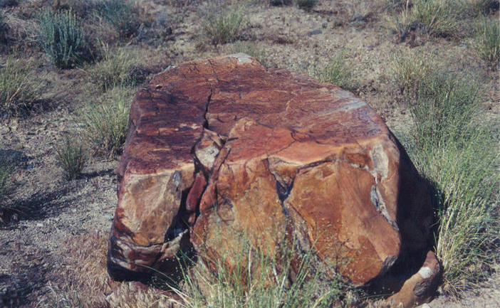 This boulder with its natural varnish is beside the road at the spot nearest the confluence point.