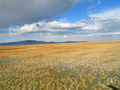 #5: View West towards Antelope Island