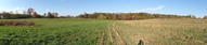 #5: WNE panoramic view from our position 28 m west of the CP