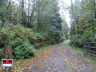 #1: The confluence is inside the forest to the left of the driveway