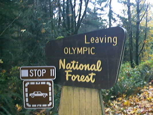 Road sign at Olympic National Forest boundary