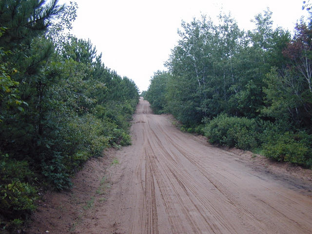 "Looking west down the sand""road"" just south of 46N-92W"