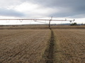 #8: The furrow where the irrigation system runs