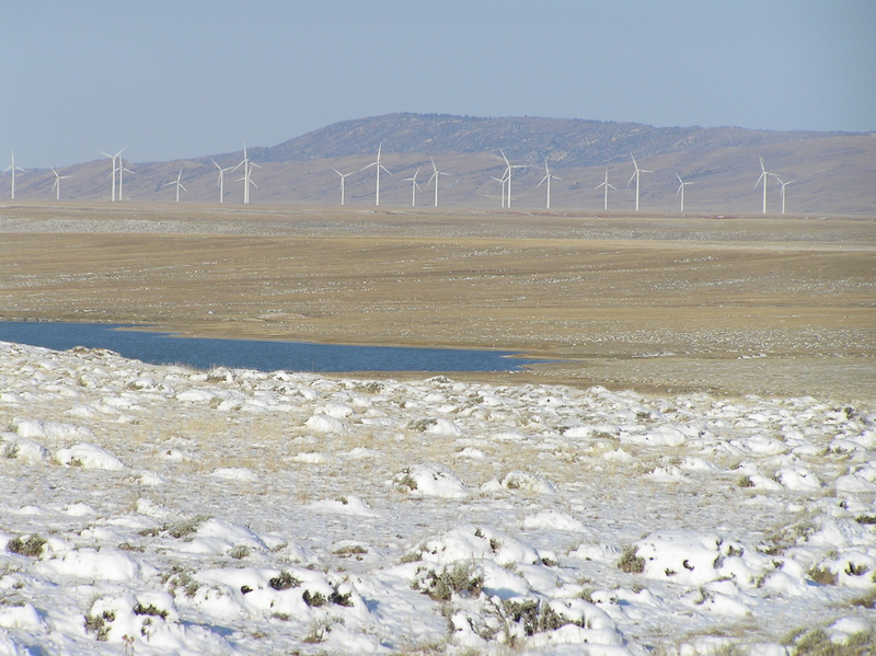 View of wind farm, looking northwest, 1.2 miles west of confluence.