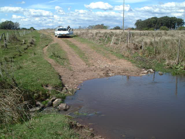 The closest approach by car ended in front of water