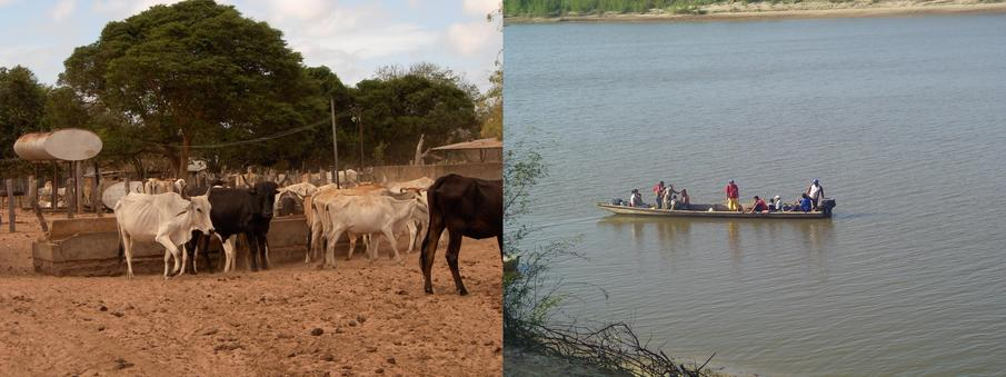 Cattle raising, fishing and local craftsmanship
