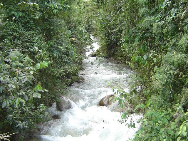 A TYPICAL ANDEAN CREEK.... BEAUTIFUL AND COLD