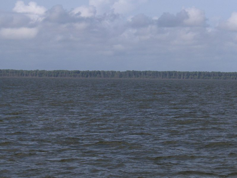 WEST VIEW, CAPURE ISLAND, ORINOCO RIVER DELTA