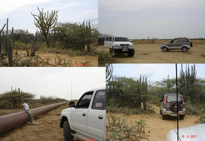 TYPICAL VEGETATION,  THE CAR IN THE DESERT, THE PIPELINE AND THE THRASHES