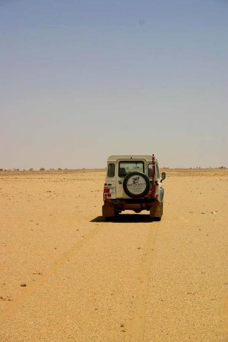Lonely Landy at the point