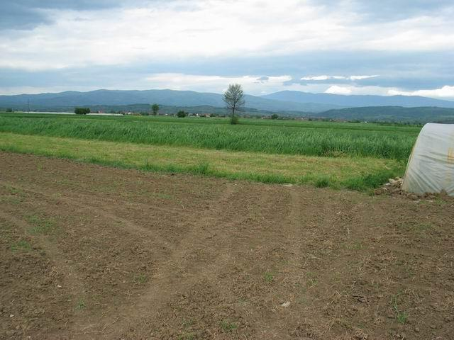 General View of Agricultural Area