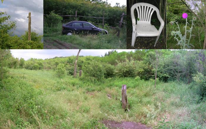 Scenes [telephone line; parking; plastic chair; thistle; watering place]