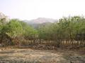 #7: View towards confluence area from Kromdraai Camp