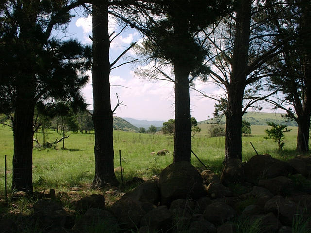 View towards Confluence from the South.  The Confluence lies somewhere on the hills on the horizon.