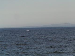 #1: View to West towards Cape Recife