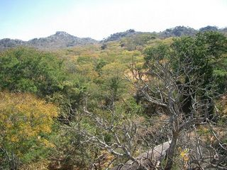 #1: Photograph of general area taking from one of the rocky hills